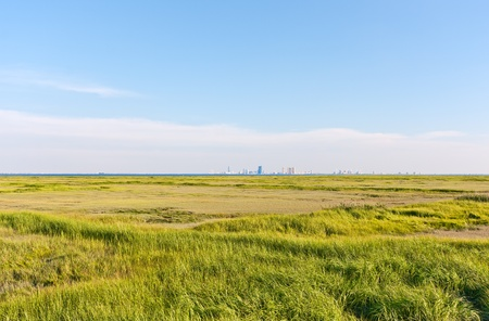 The Atlantic City, New Jersey skyline. The foreground is a marsh with green grass (Forsythe Nature Reserve). photo