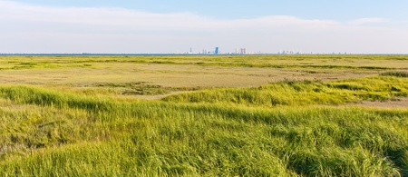 Panorama of the Atlantic City, New Jersey skyline. The foreground is a marsh with green grass (Forsythe Wildlife Refuge).
