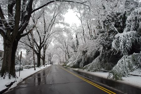dc: Inverno a Washington DC