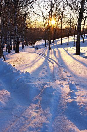 boldino: Winter sunset, Russia Stock Photo