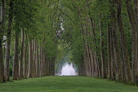 erect: Park of Versailles, France, 2008 Stock Photo
