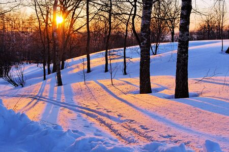 Winter sunset Stock Photo - 3694941