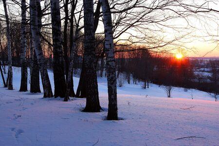 boldino: Winter sunset in a countryside  Stock Photo