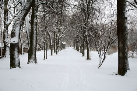 boldino: After a snowstorm