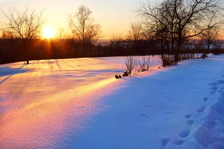 Winter sunset Stock Photo - 3833323