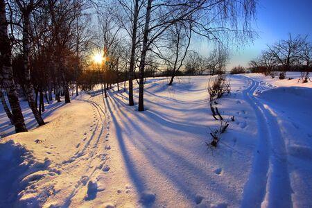Winter park at sunset Stock Photo - 3879502
