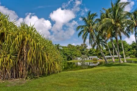botanic: Fairchild tropical botanic garden, FL, USA