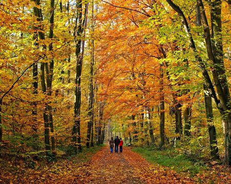 Famille de marche par le parc de l'automne