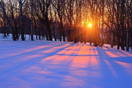 겨울 숲, 러시아에서에서 붉은 석양