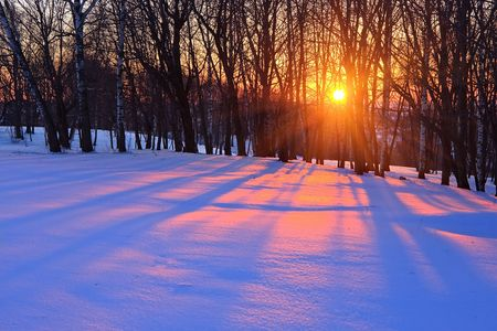 Red sunset in a winter forest, Russia Stock Photo - 5355863