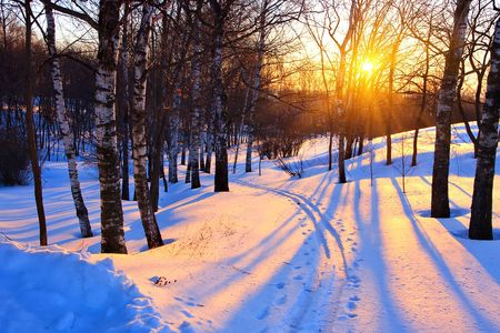 nordic country: Beautiful sunset in a winter park, Russia Stock Photo