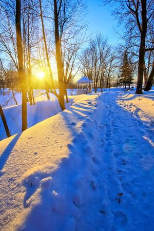 Beautiful sunset in winter park Stock Photo - 5541449