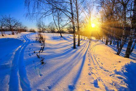 Hermosa puesta de sol en el parque de invierno