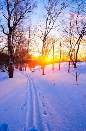 Beautiful sunset in winter park Stock Photo - 5541412