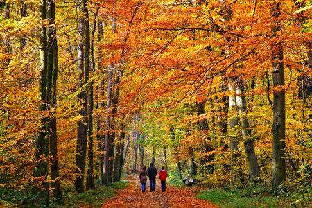 Caminando a través de Parque de otoño