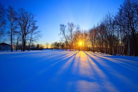 Beautiful sunset in winter park Stock Photo - 5615081