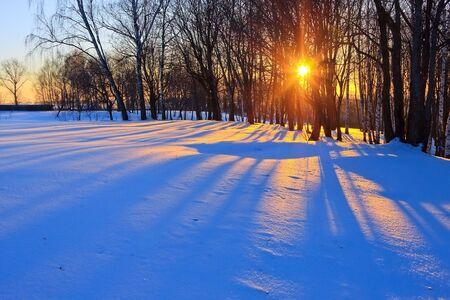 Puesta de sol rojo en el bosque de invierno, Rusia