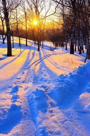 boldino: Beautiful sunset in winter park, Russia Stock Photo