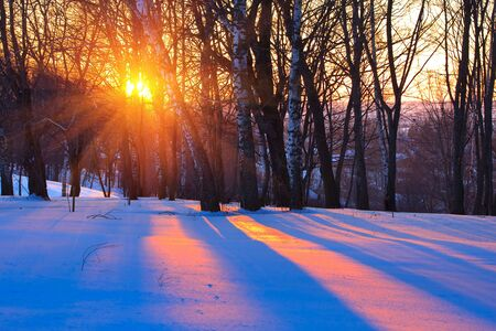 boldino: Red sunset in winter forest, Russia Stock Photo