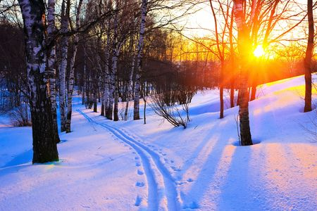 north woods: Beautiful sunset in a winter park, Russia Stock Photo