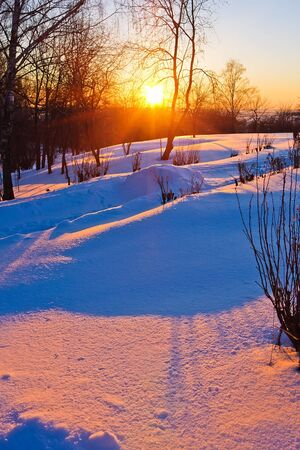 boldino: Red sunset in a winter park, Russia