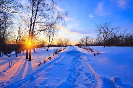 Sunset in countryside at winter Stock Photo - 6082948