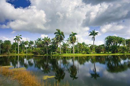 Fairchild tropical botanic garden, FL, USA photo