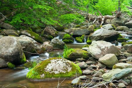 Wooden river in Shenandoah national park, VA, USA Stock Photo - 6460687