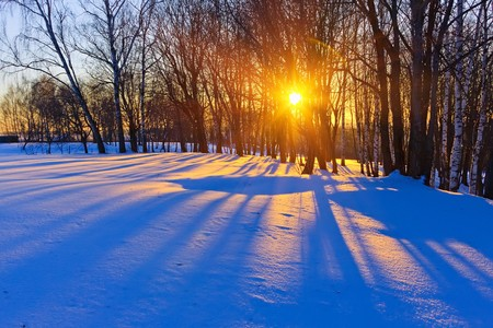 north woods: Beautiful sunset in a winter forest Stock Photo