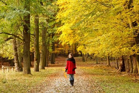 caminando: Caminando en el Parque de oto�o