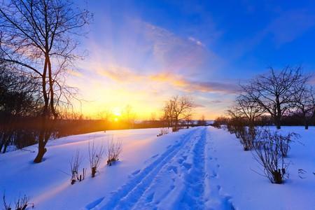 Beautiful winter sunset Stock Photo - 8239830