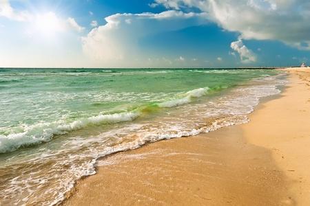florida landscape: Beach in Miami, FL