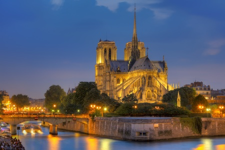 notre dame cathedral: Notre Dame de Paris at night  Stock Photo