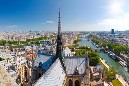 paris from notre dame photo