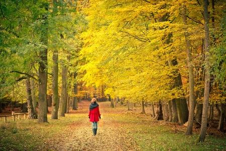 caminando: Paseando por el Parque de oto�o