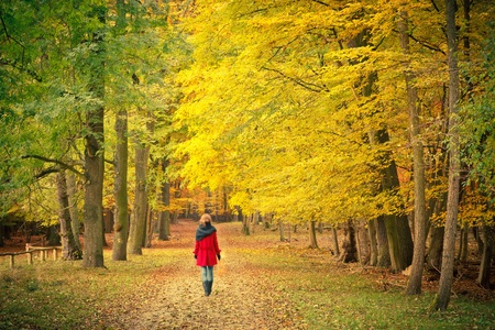 Walking in the autumn park Stock Photo - 10654319