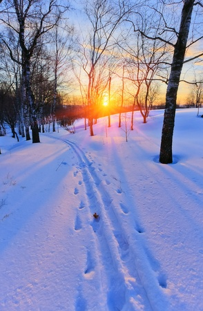 Ski track in countryside at sunset photo
