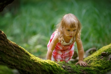 lost child: Little girl in the forest Stock Photo