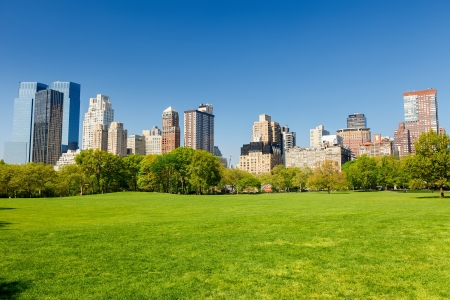 park: Central park at sunny day, New York Stock Photo