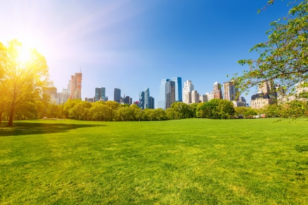 Central park at sunny day, New York Stock Photo