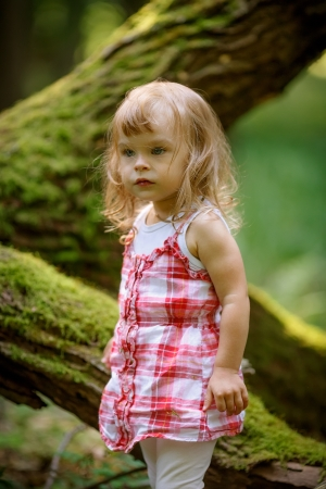 Little girl in the forest photo