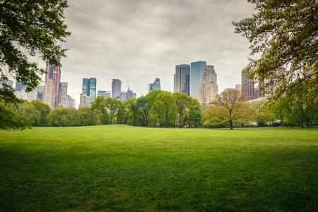 Central Park à jour pluvieux, New York City