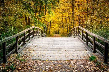 Wooden bridge in the autumn park Stock Photo
