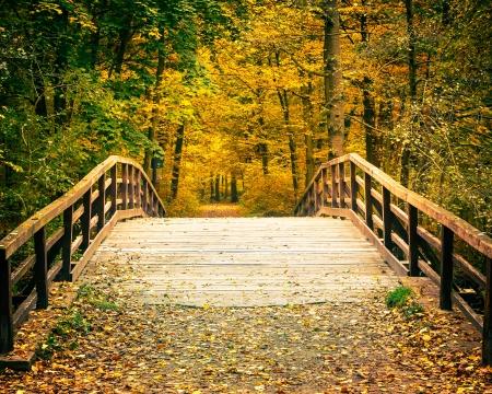 Wooden bridge in the autumn park Stock Photo
