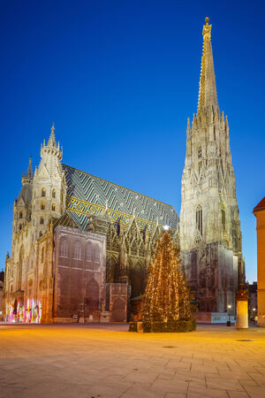 stephansplatz: St  Stephan cathedral and christmas tree, Vienna Stock Photo