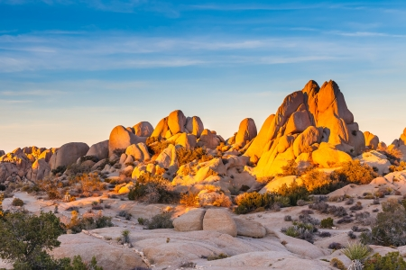 mojave desert: Joshua Tree National Park, Mojave Desert, California