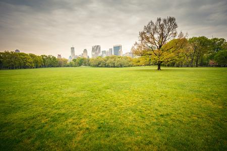 Central park at rainy day photo