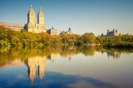 central park: Central park at sunny day Stock Photo
