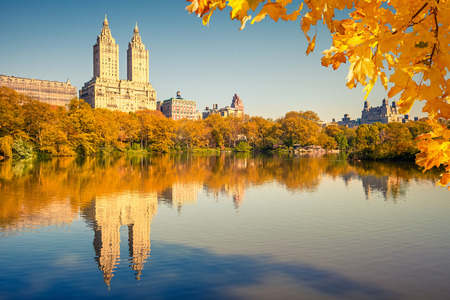 Central park at sunny day photo