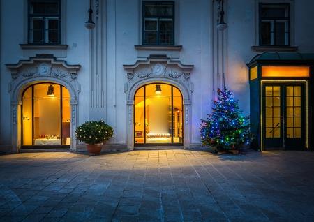 christmas winter: Christmas tree in Vienna